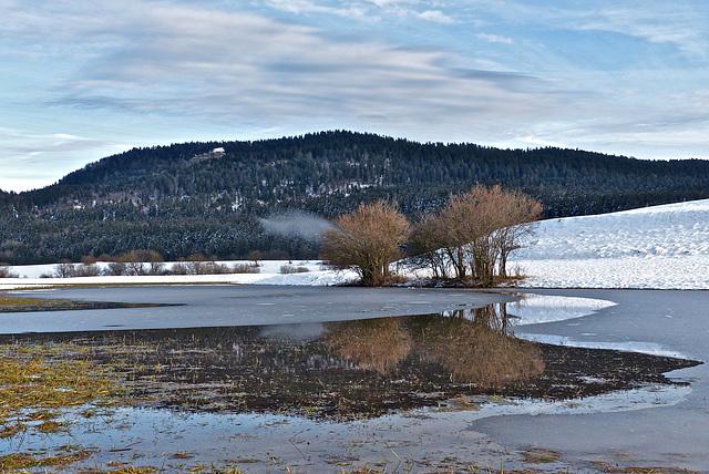 P1080115- Prairie inondée et reflet