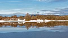 P1080117- Reflet dans prairie inondée