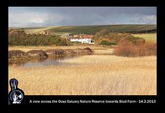 Stud Farm from Ouse Estuary Nature Reserve - 14.2.2013