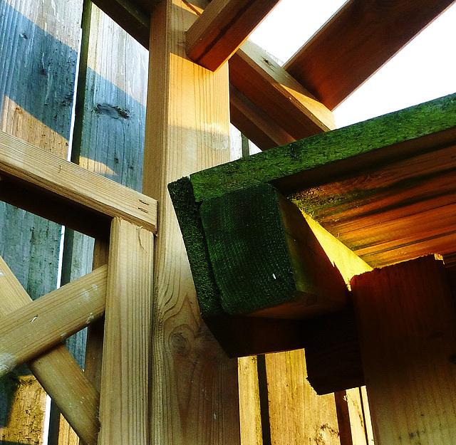 Wood textures 10
