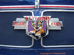 Leyland Tiger Cub Badge