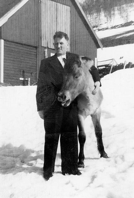 (205) Arnold Svendsen og Lyna på Bergum