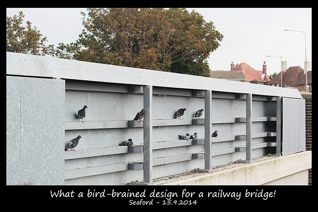 Bird-brained railway bridge - Seaford - 15.9.2014