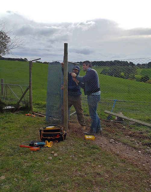 building the new goose pen
