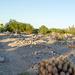 Ehrenberg, AZ: Pioneer Cemetery (0744)