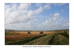 Harvesting Linseed at Tidemills - Bishopstone - 1.9.2009