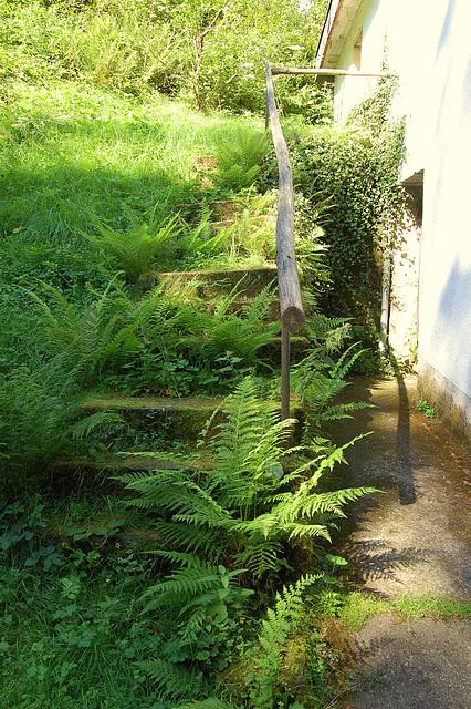 Ŝtuparo reen al la verda naturo, aŭ kiel iam ree estos (Treppe zurück zur grünen Natur (oder wie es irgenwann wieder sein wird)