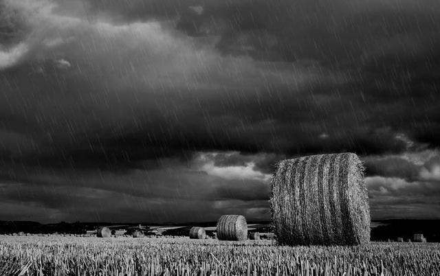 Rain, Katewell, Evanton, Ross-shire, Scottish Highlands