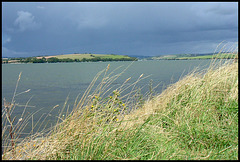 the wide Tamar River