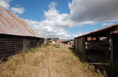 Dukes Farm, Bungay, Suffolk (13)