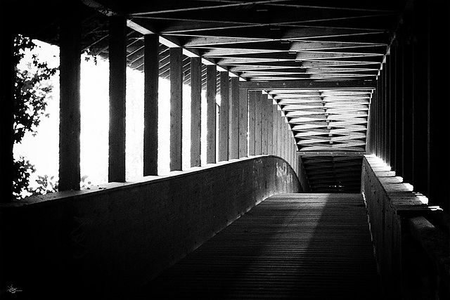 Brücke zur Unsterblichkeit