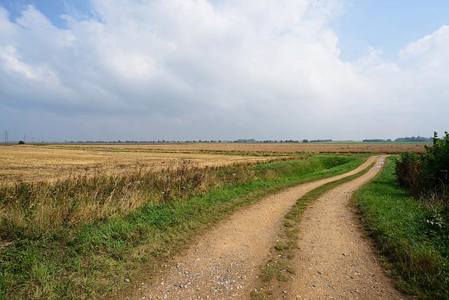 Fen Farmland,Cambridgeshire, England