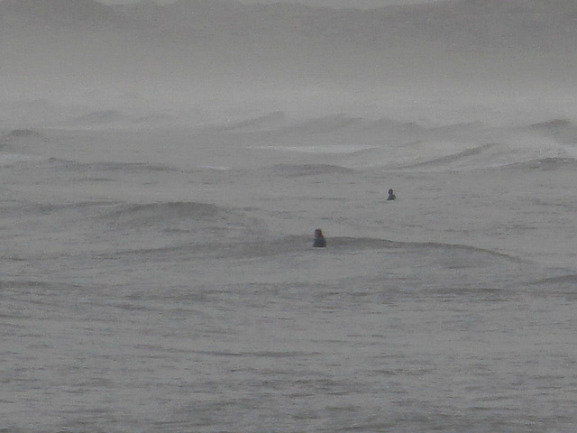 Even in this cold windy winter's day, there were surfers