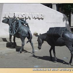 Animals in War - artillery mules