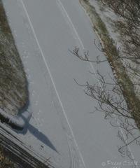 snow story ..