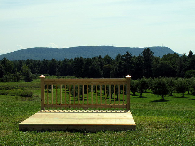 Art in the Orchard 6
