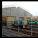 07 011 diesel shunter at St Leonards Railway Engineering Ltd. -  18.11.2011