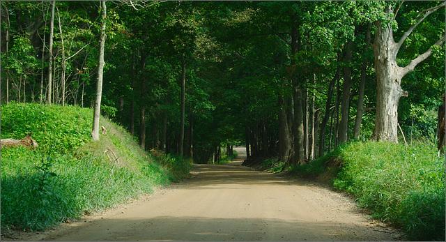Musgrove Highway