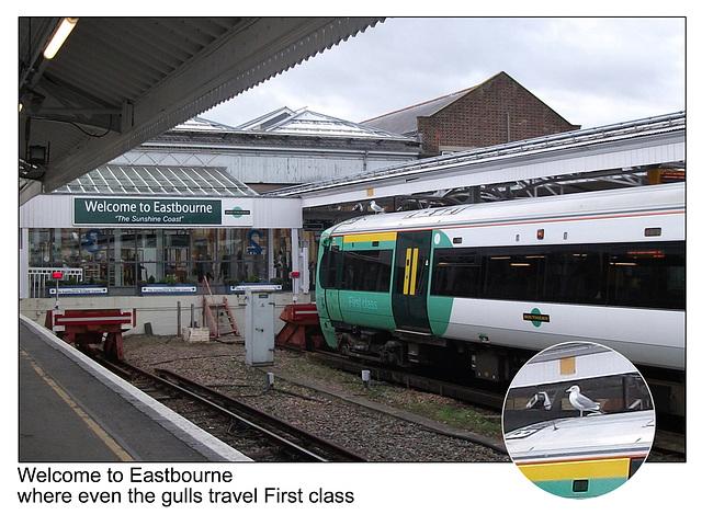 Gulls go First  - Southern Railway 377 468 - Eastbourne - 20.1.2012