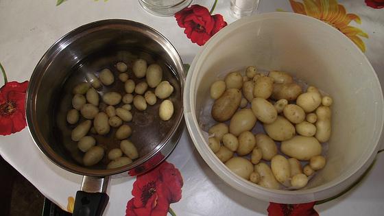 My home grown potatoes