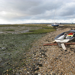 Washed up on the Oyster Beds, North Hayling Island