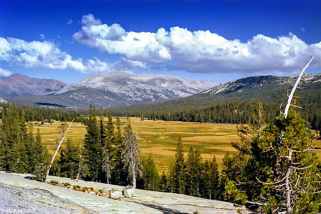 Tuolumne Meadows from Pothole Dome, Yosemite NP, July 1980 (090°)