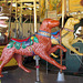 Carousel Dogs