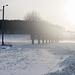 Sunny winter