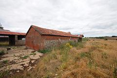 Dukes Farm, Bungay, Suffolk  (88)