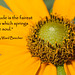 """235/365: """"Gratitude is the fairest blossom which springs from the soul."""" ~ Henry Ward Beecher"""