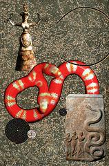 éloge des serpents