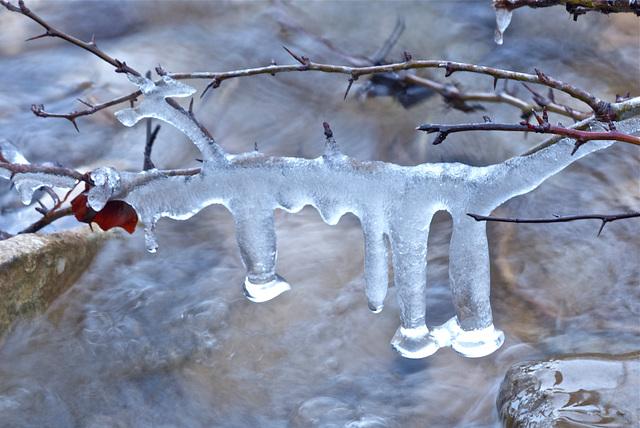 Suspension de glace