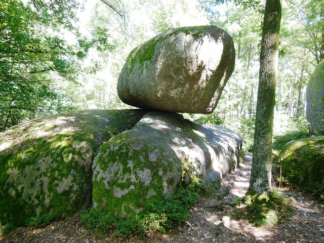 Unu el ŝancelŝtonoj en la naturparko Blockheide