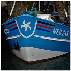 NEU245