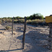 Ehrenberg, AZ: Hualapai concentration camp site (0730)