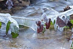 Guirlande de glace