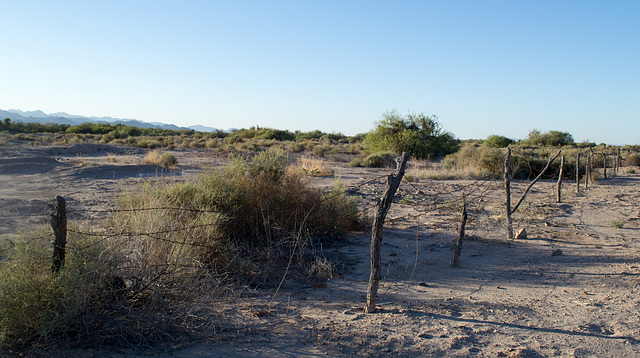 Ehrenberg, AZ: Hualapai concentration camp site (0726)