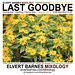 CDCover.LastGoodbye.Trance.SummerEnd.August2013
