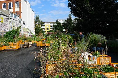 Gartendeck -- gartendeck-1160607