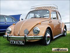 VW Beetle - FFW 679L