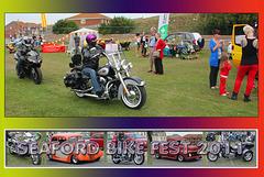 SBF2011 Bikes & locals