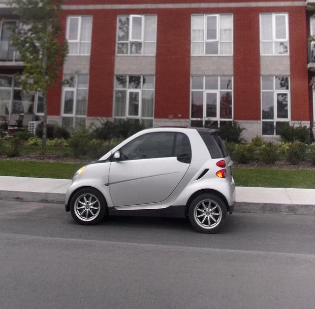 Smartly parked / Smart en vue  - Recadrage