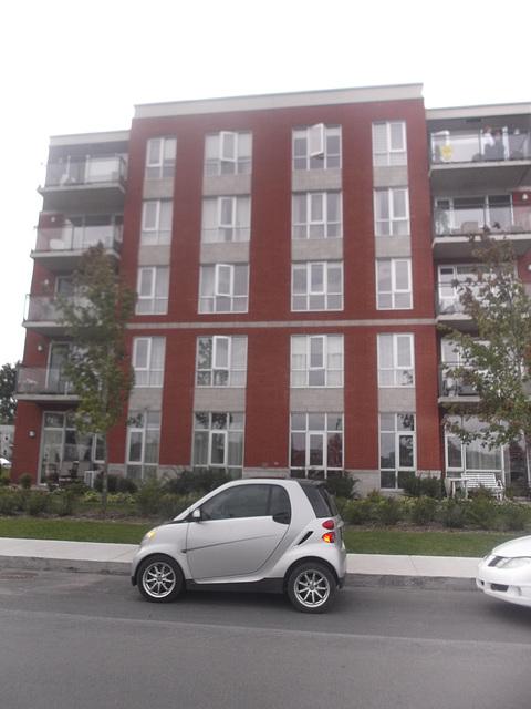Smartly parked / Smart en vue.
