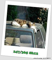 03/09    dur dur d'être gardien de parking