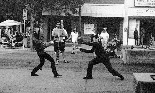 Longmont Street Fair - Fencing