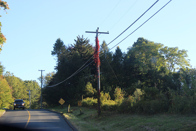 HELCO 4.8kV - New Hartford, CT