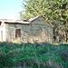 Abandoned house at Arowhenua
