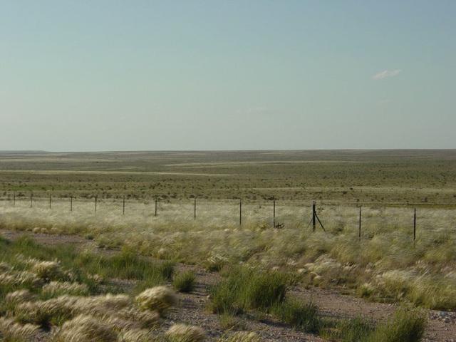Irridescent Desert