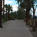 Palm Springs Bikeway (4542)