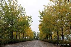 Autumn and no tourists - Heaven!